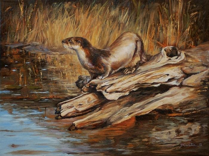 Wildlife Painting - Otter by Dustin Curtis