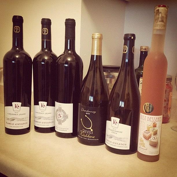 Our Harvest From Todays Pec Wine Tour Photograph by Jeff Rogerson