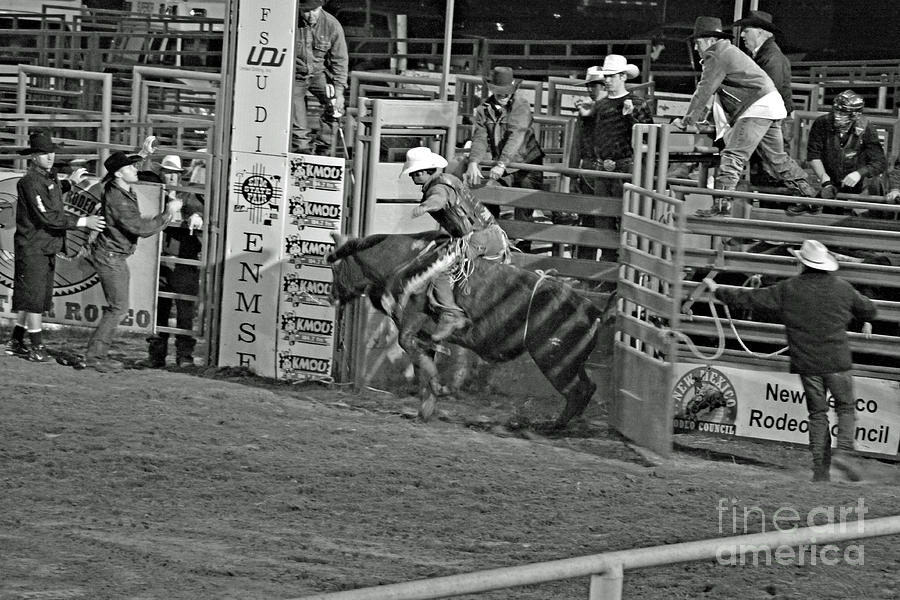 Bull Riding Photograph - Out Of The Chute by Shawn Naranjo