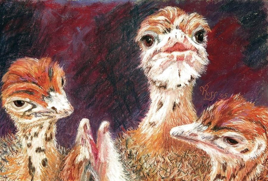 Ostrich Painting - Outsdoorn Babes by Vicki Ross