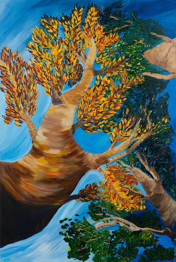 Trees Painting - Overhead by Dani Altieri Marinucci
