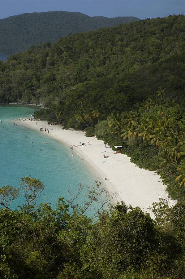 Vertical Photograph - Overhead Of Trunk Bay by Margie Politzer