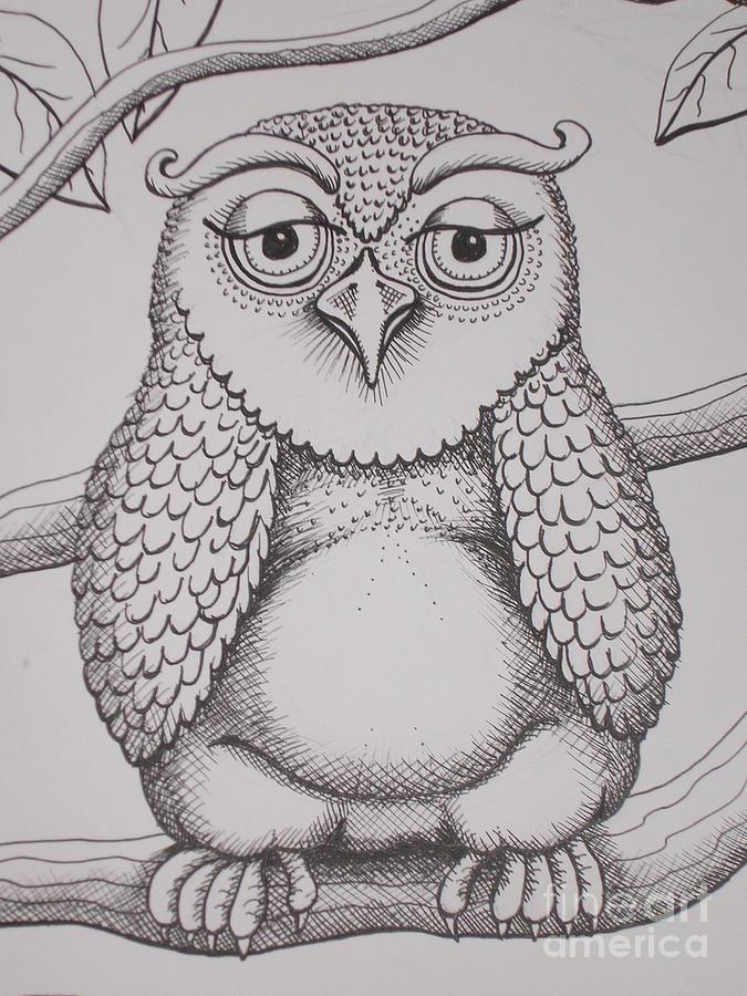 Owl Drawing - Owl Sketch by Barbara Stirrup