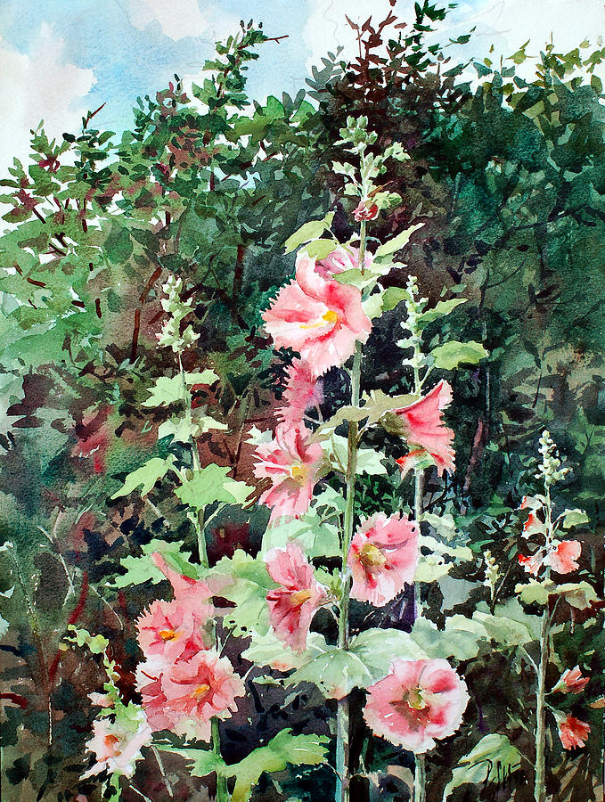 Summer Garden Painting - Oxenden Hollyhock by Peter Sit