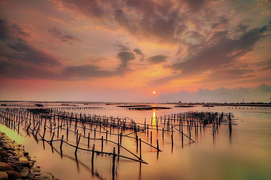 Horizontal Photograph - Oyster Racks by Taiwan Nans0410