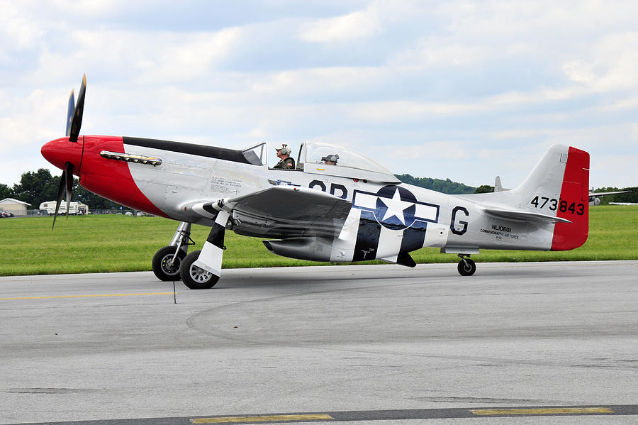 Warbirds Photograph - P-51d Mustang by Dan Myers