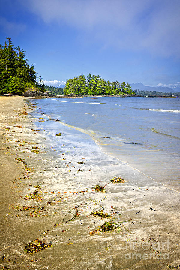 Pacific Photograph - Pacific Ocean Coast On Vancouver Island by Elena Elisseeva