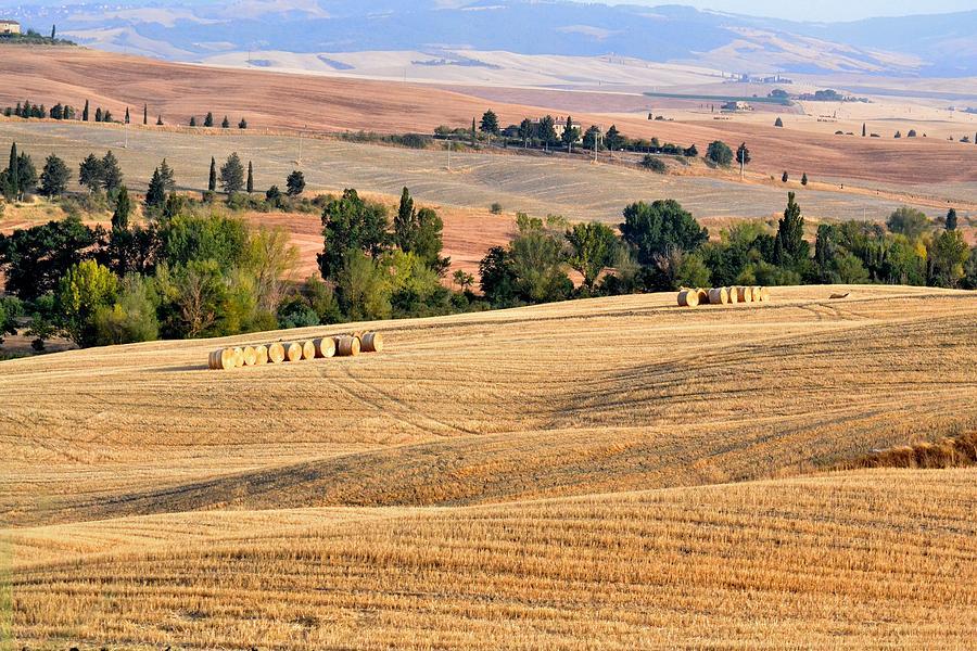 Italy Photograph - Paesaggi Toscano by Luca Bernardini