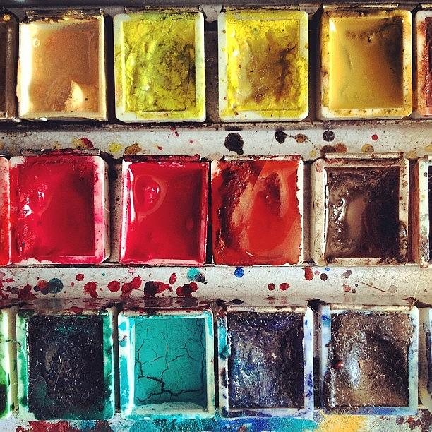 Paint Photograph - Paintbox by Nic Squirrell