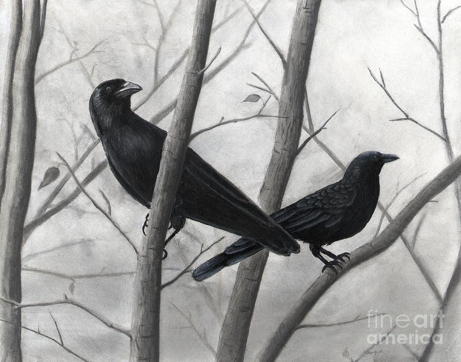 Crows Drawing - Pair Of Crows by Christian Conner