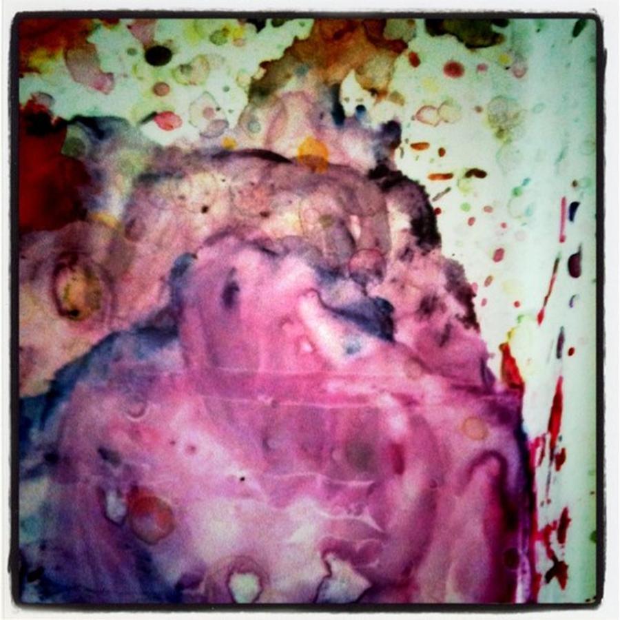 Paint Photograph - Palette Mixes by Ken Powers