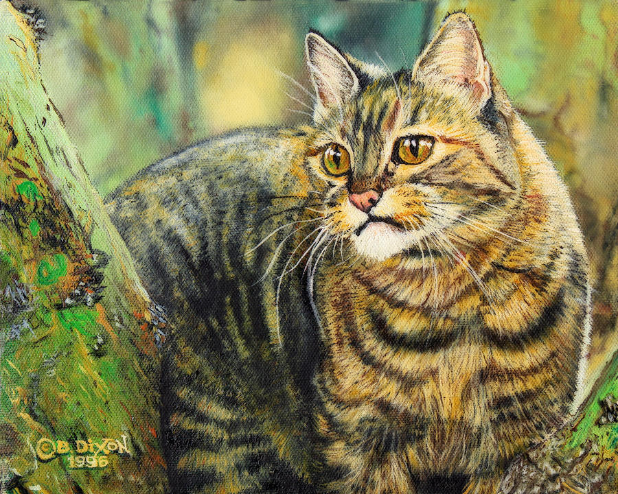 Cat Painting - Palo Verde Kitty by Baron Dixon