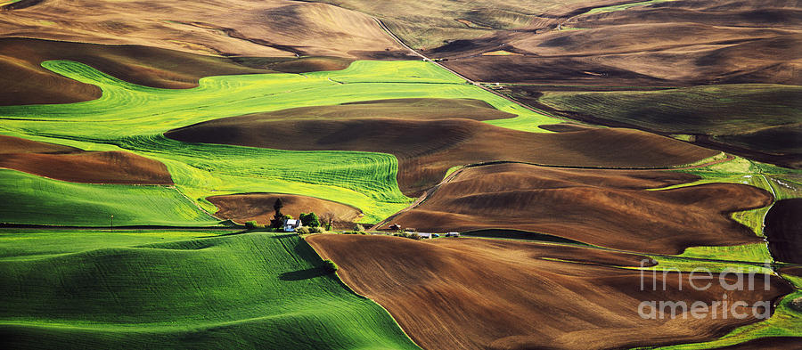 Wheat-producing Photograph - Palouse Farm Country by Dennis Flaherty and Photo Researchers