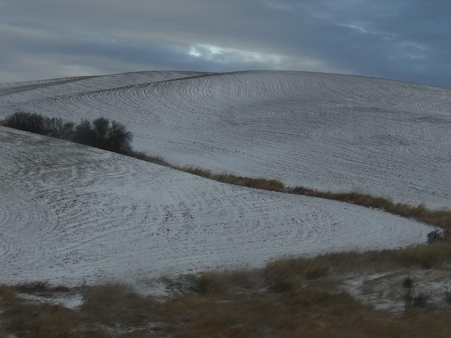 Landscape Photograph - Palouse Winter 1 by Mary McInnis