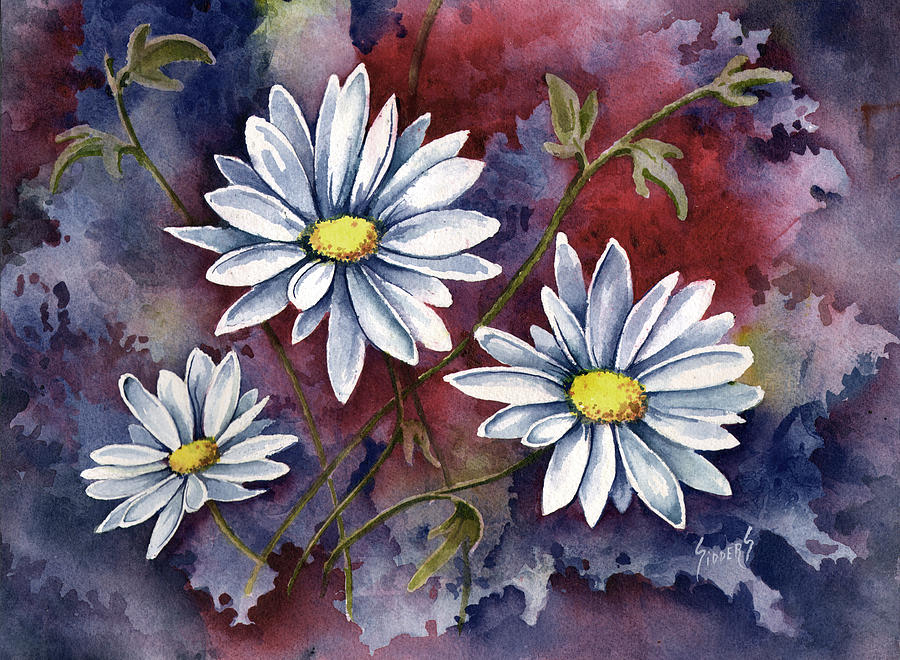 Flower Painting - Pampa Daisies by Sam Sidders
