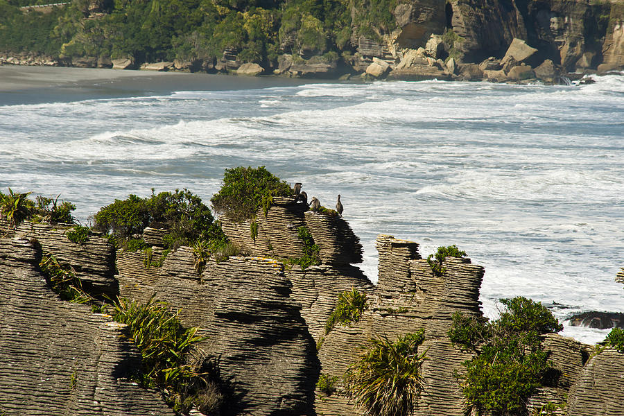 Rock Photograph - Pancake Rock Formations by Graeme Knox
