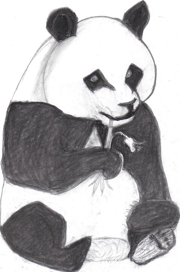 Cute pencil drawings tumblr