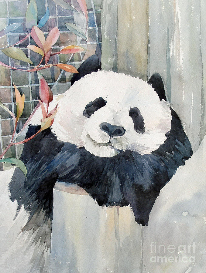 Bear Watercolor Painting Artists
