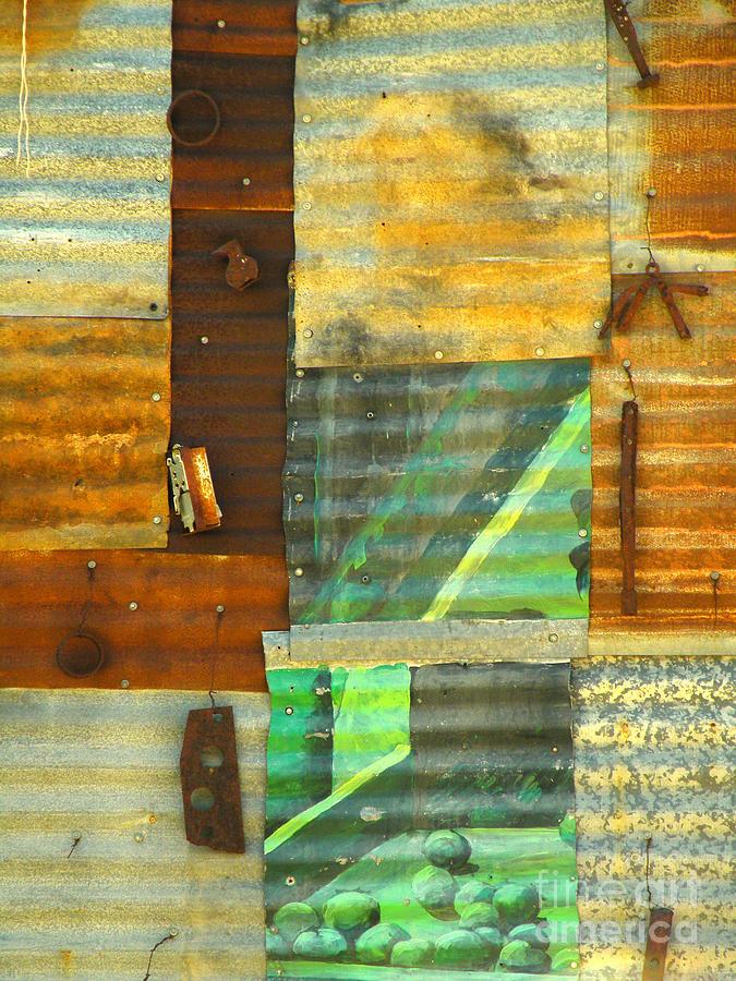 Wall Photograph - Panel With Peas by Joe Jake Pratt