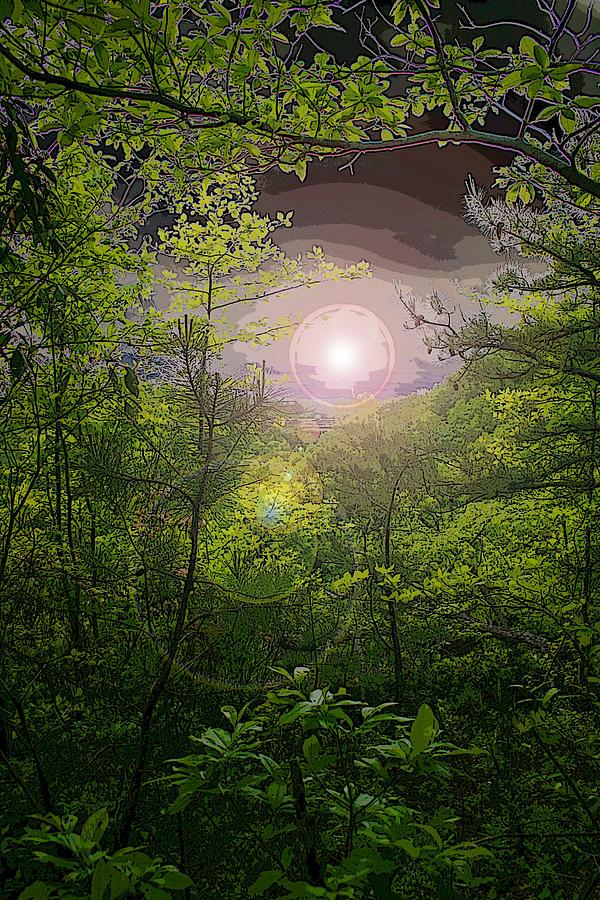 Pm Photograph - Paradise At Dawn by Nina Fosdick