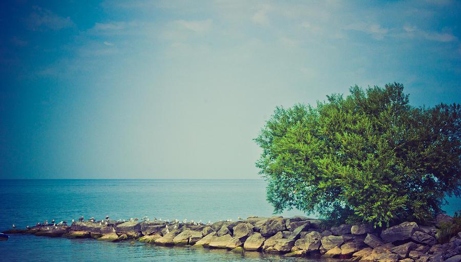 Beach Photograph - Paradise Cove by Sara Frank