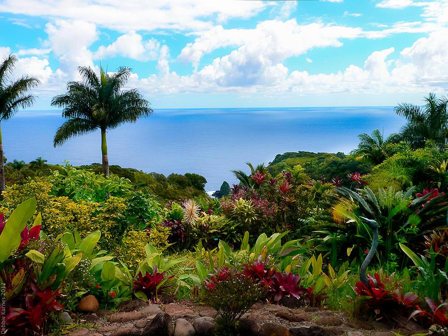 Maui Photograph - Paradise Found by Debbie Karnes