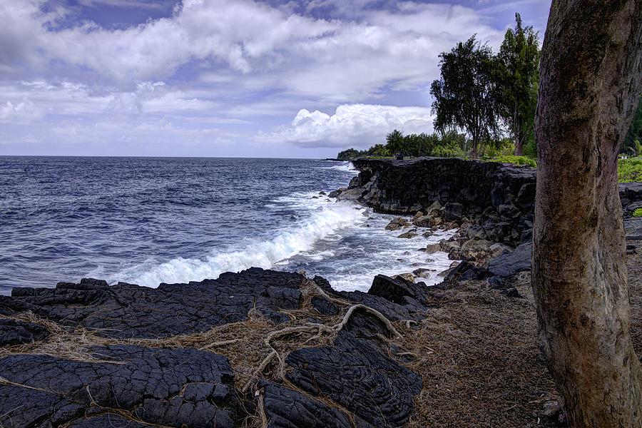 Hawaiian Paradise Park Photograph - Paradise by Mike Herdering