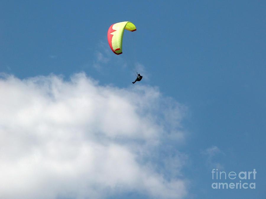 Sports Photograph - Paraglider by Cindy Singleton