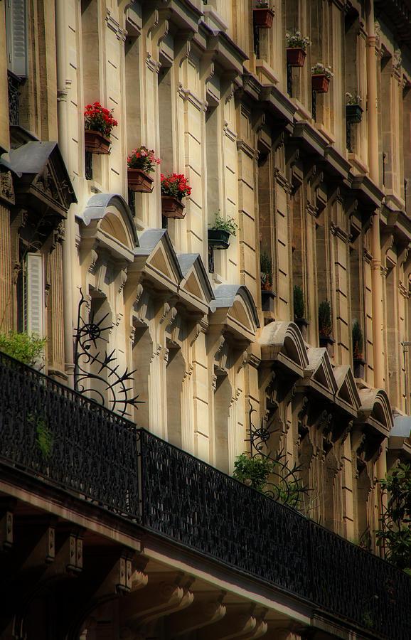 Paris Photograph - Paris Windows by Andrew Fare