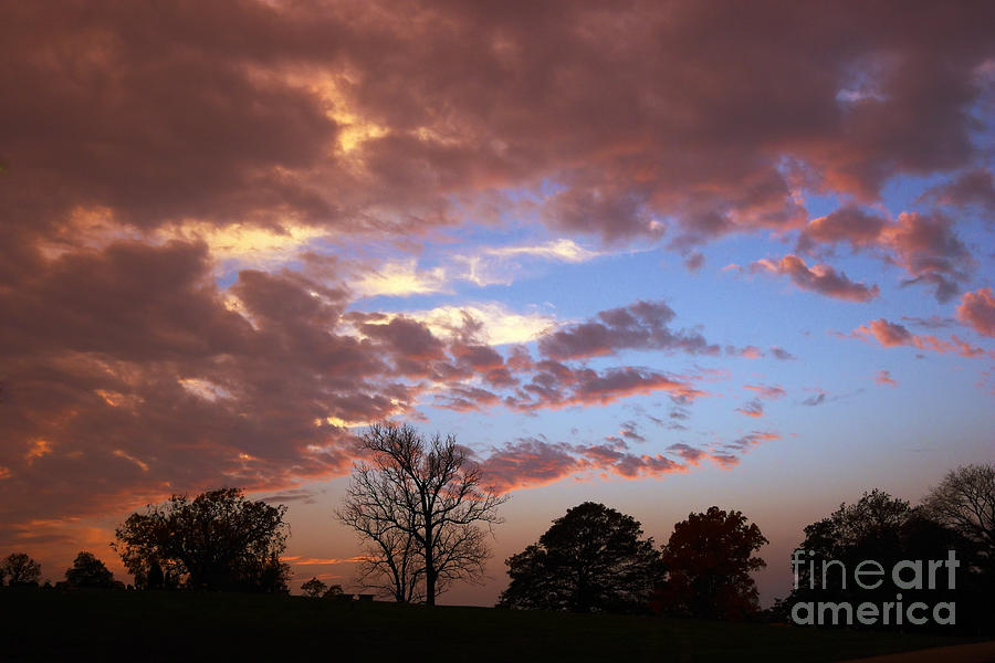 Silhouette Photograph - Park At Sunset by Susan Isakson