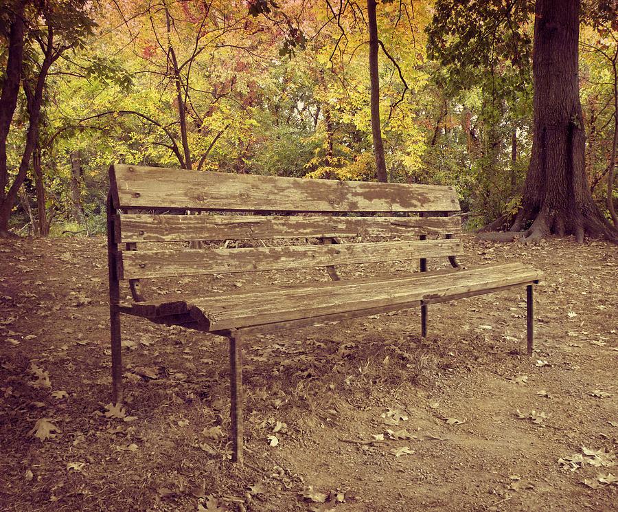 Park Bench Photograph - Park Bench by Steven Michael