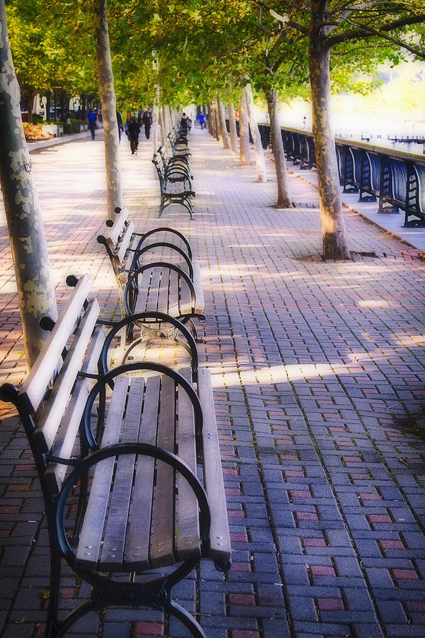 Benches Photograph - Park Benches In Hoboken by George Oze