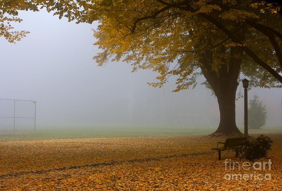Autumn Photograph - Park In Autumn by David Buffington