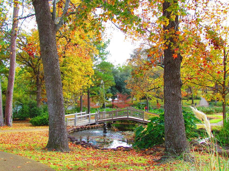 Nature Photograph - Park In Tyler by Evgeniya Sohn Bearden