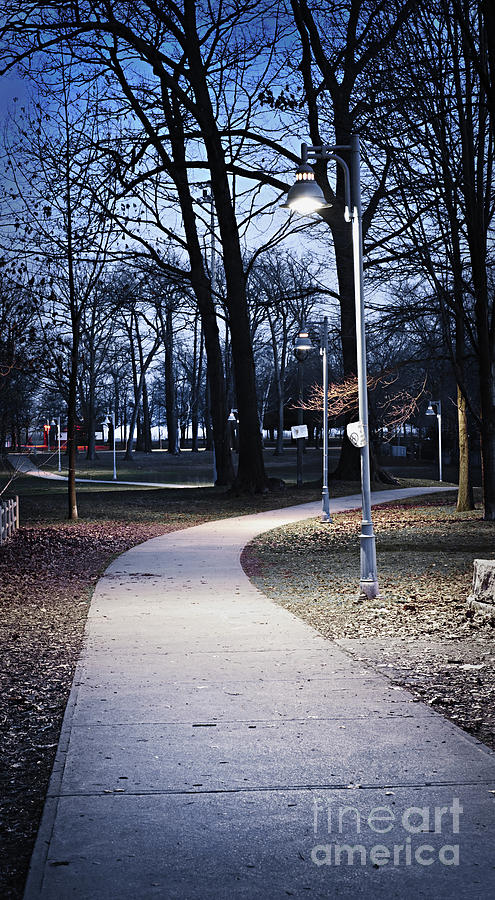 Park Photograph - Park Path At Dusk by Elena Elisseeva