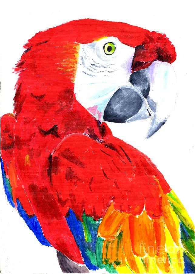 Parrot Photograph - Parrot by Helen Esdaile