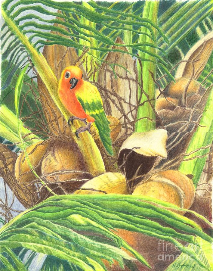 Nature Painting - Parrot In Palm by Norma Gafford