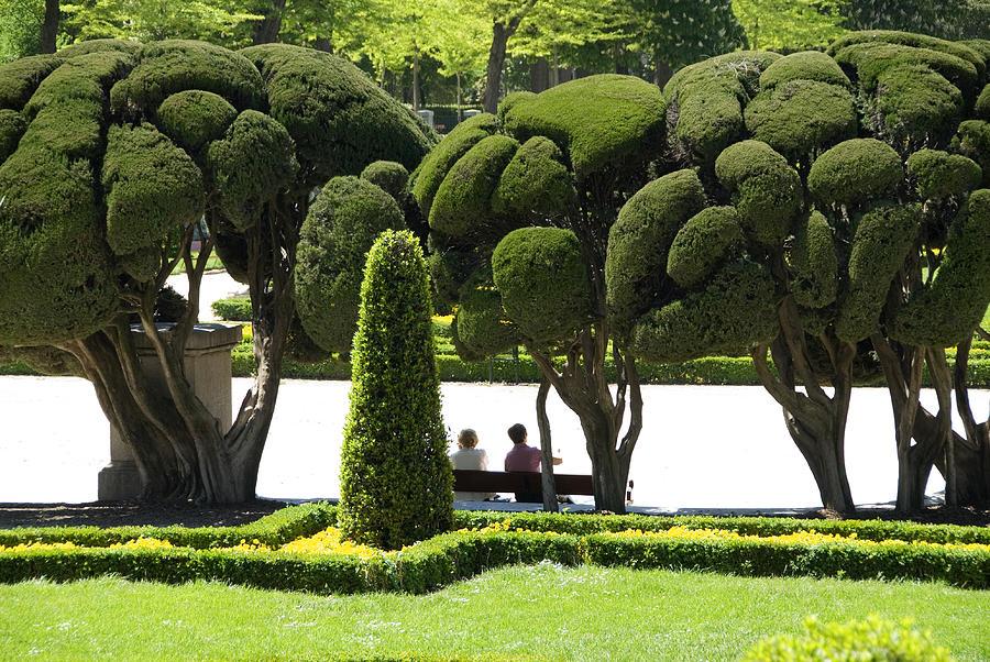 Adult Photograph - Parterre Gardens In Parque Del Buen Retiro by Krzysztof Dydynski