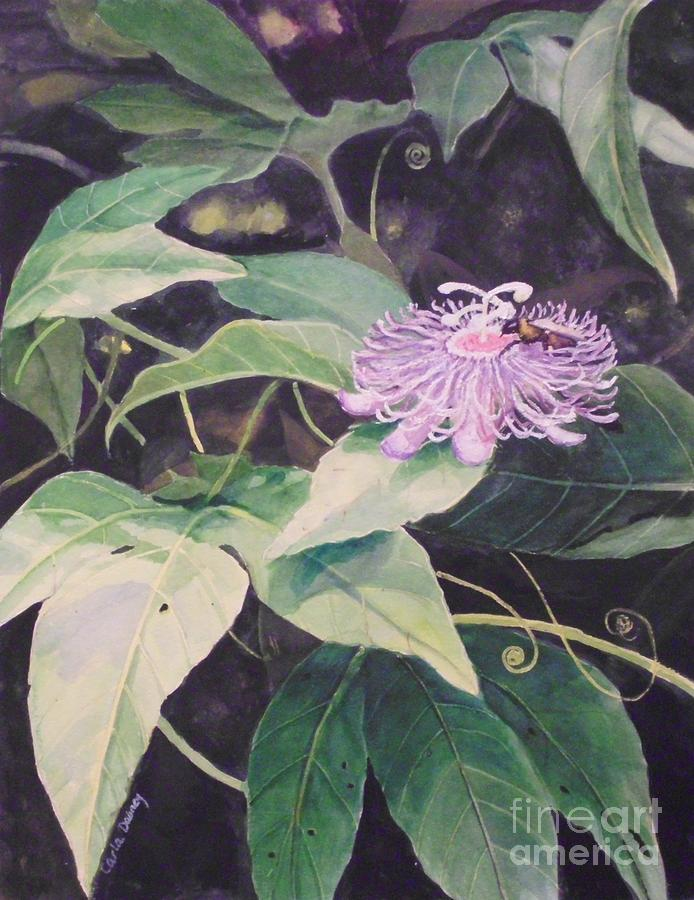 Flower Painting - Passion Flower by Carla Dabney