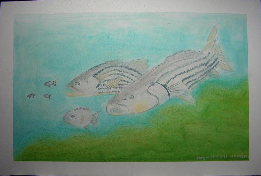 Fish Pastel - Pastel Fish by Maya M