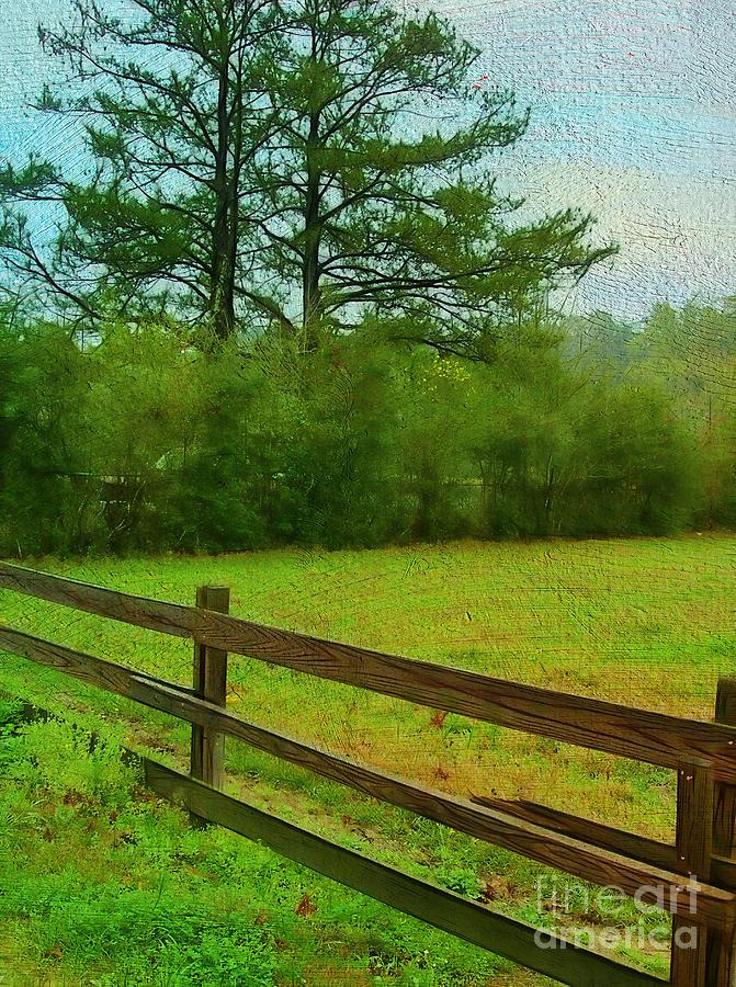 Field Photograph - Pastureland by Judi Bagwell