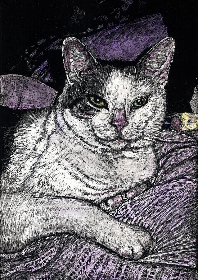Purples Painting - Patches The Cat by Robert Goudreau