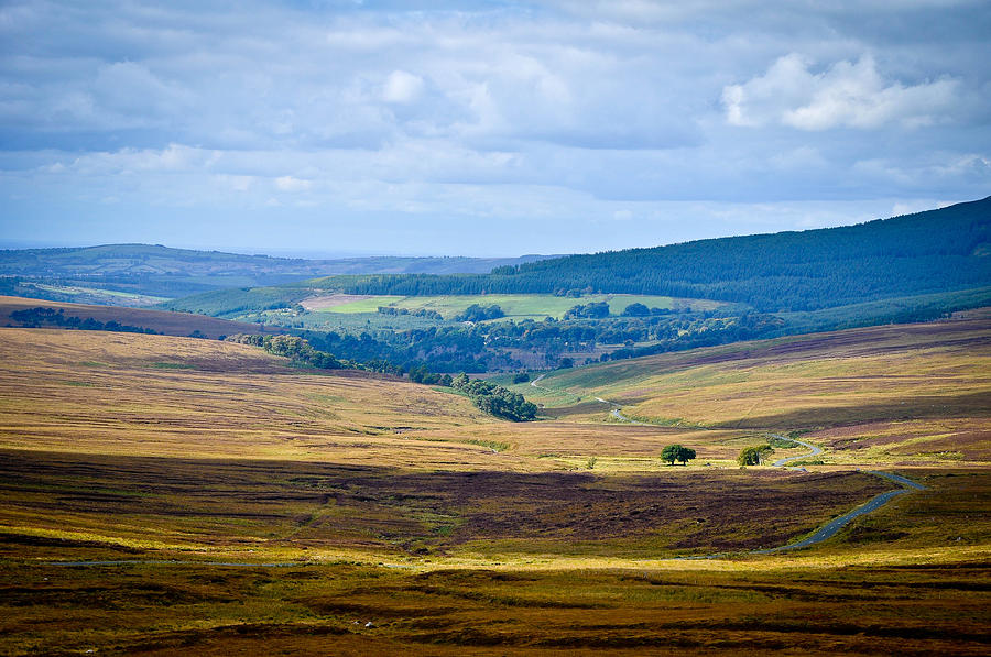 Hills Photograph - Patchwork Land by Erica McLellan