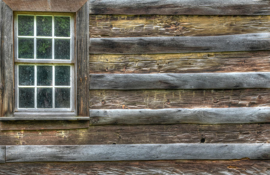 Landscape Photograph - Patriot by Mary Anne Baker