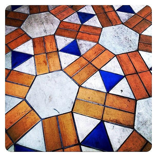 Pattern Photograph - Pattern by Natasha Marco