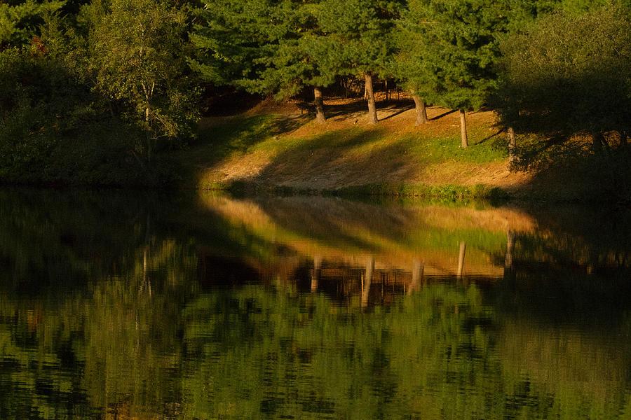 Landscape Photograph - Patterns Of Nature by Karol Livote