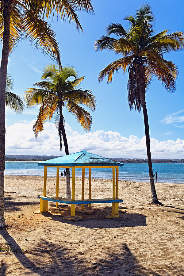 Arecibo Photograph - Pavilion On A Beach In Arecibo by George Oze