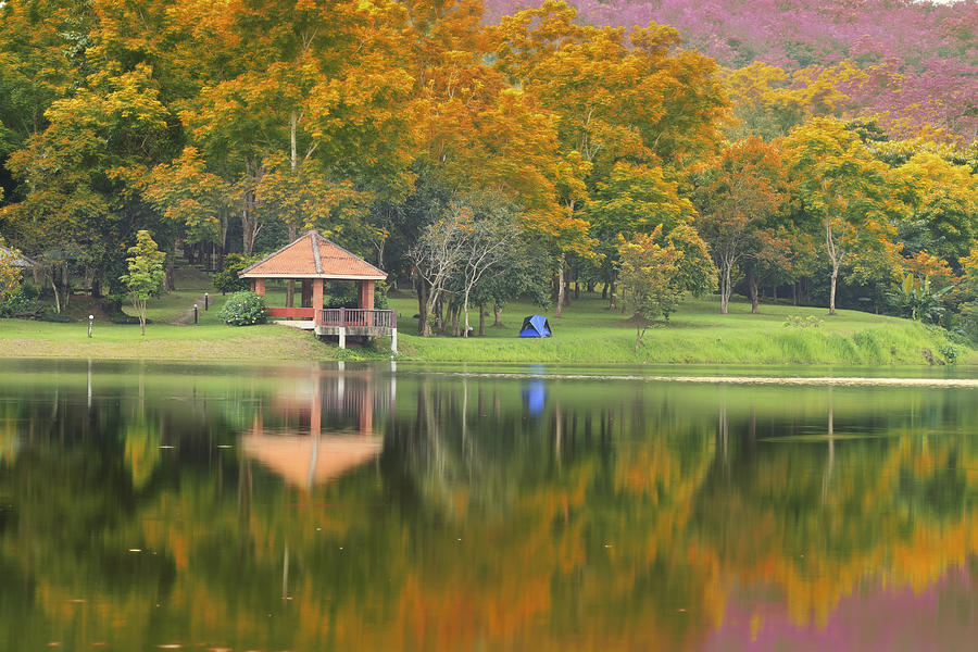 Autumn Photograph - Pavillion In The Autumn Park  by Anek Suwannaphoom