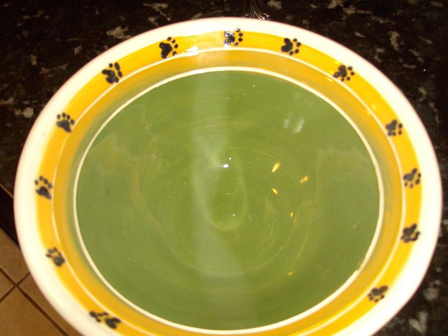 Pottery Ceramic Art - Paw Bowl For A Cause by Karen Pollard