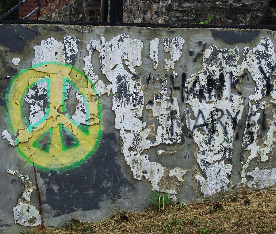 Peace 2012 #1 Photograph by Todd Sherlock